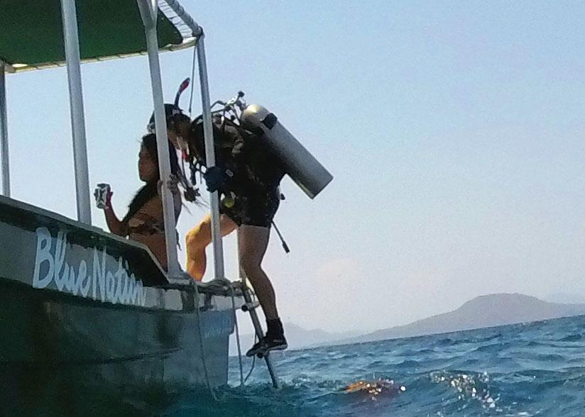 dive ladder